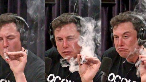 Cannabis-Altria